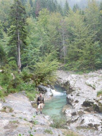Srednja vas v Bohinju, Slovenia: Acque cristalline