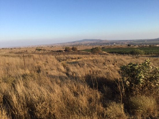 Merom Golan: Just great views...
