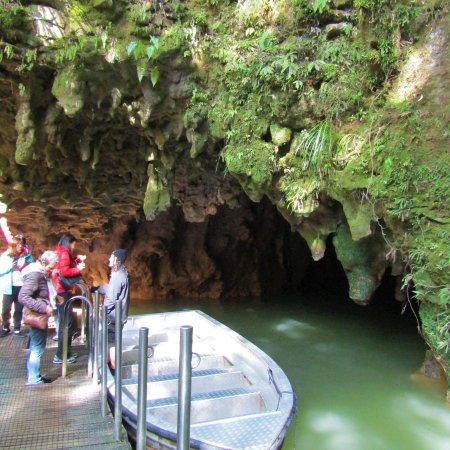 Фотография Светящиеся пещеры Вайтомо