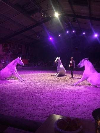Theatre Equestre Camarkas : photo3.jpg