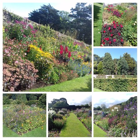 Glenarm, UK: Some of the beautiful borders.