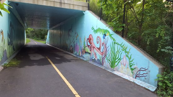 Southwick, MA: Rail Trail Tunnel