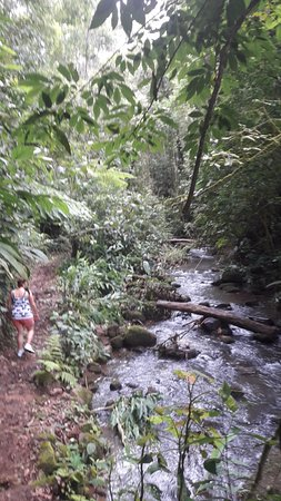 Vapues Nicaragua Tours: The Cloud Forest of Hotel de Montana Aguas del Arenal