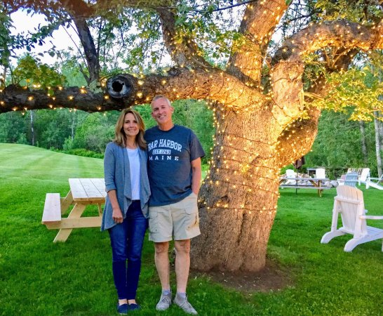 Red Clover Inn & Restaurant: Under one of the oldest apple trees in Vermont