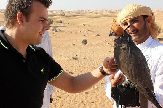 Private: Falcon 1 - Private Dubai...