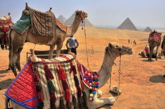 17-noite Jordan e Egito Destaques com...