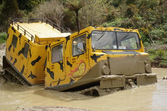 Off-Road Rainforest Hagglund Tour