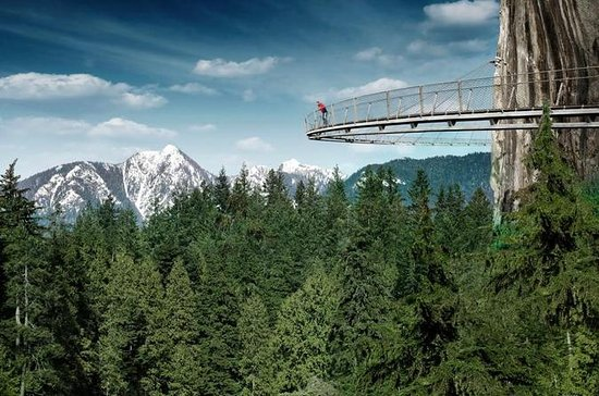 Small-Capilano Suspension Bridge og...