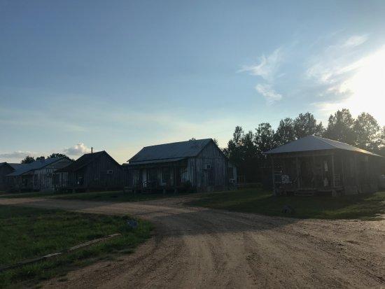 Greenwood Photo