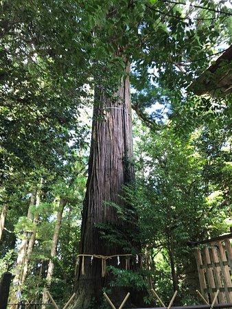 Susa Shrine: photo1.jpg
