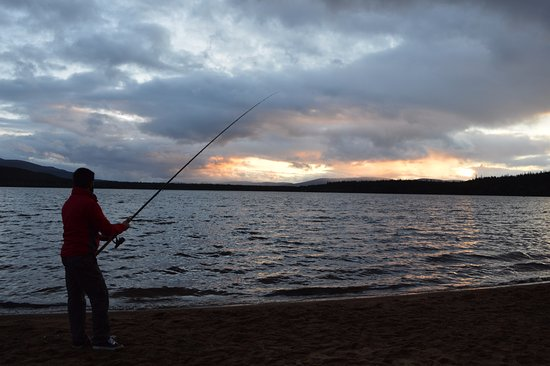 Aviemore, UK: This time I could not catch any. Better luck Next year.