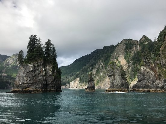 Kenai Fjords Tours: Bay view...amazing...