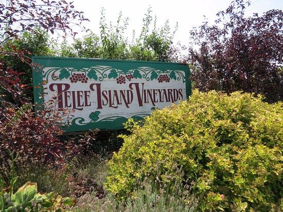 Pelee Island Winery: enseigne avant