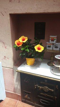 La Casita Salon de te: La Casita Salòn de tè