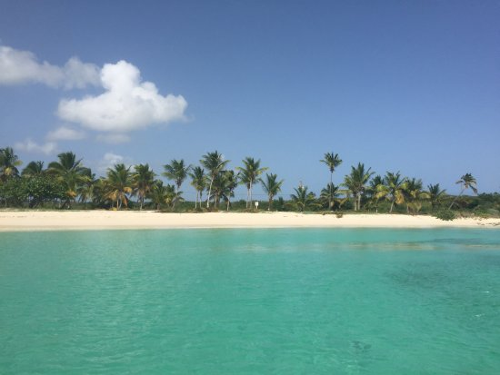 Caribbean Marines: photo3.jpg