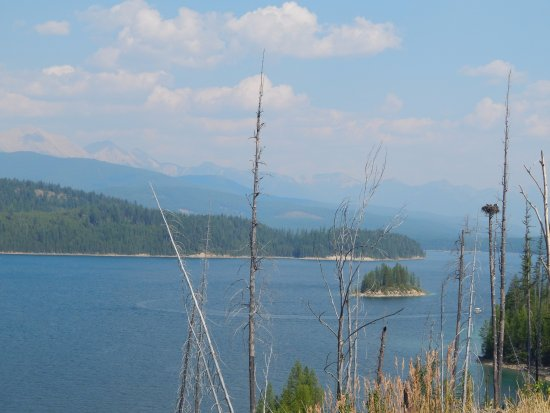 Flathead National Forest: Along the drive
