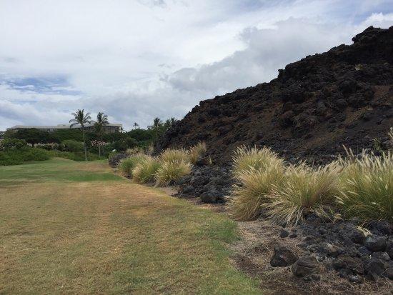 Waikoloa Beach Golf Course : photo2.jpg