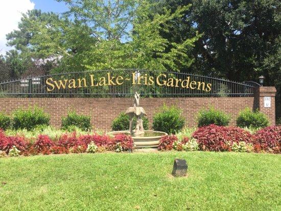 Swan Lake Iris Gardens: 8-21-17