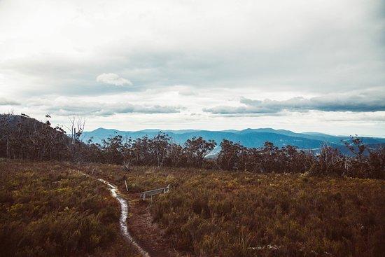 Huonville, Australia: Walking tracks to Mt Misery