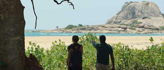 Tangalle, سريلانكا: relax yala