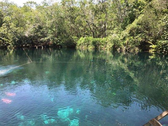 Acuatic Tulum: Cenote Car Wash