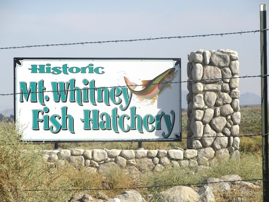 Independence, CA: Mt. Whitney Fish Hatchery