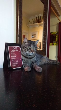 Speakeasy Inn: Captain Brinley! (with drink menu)