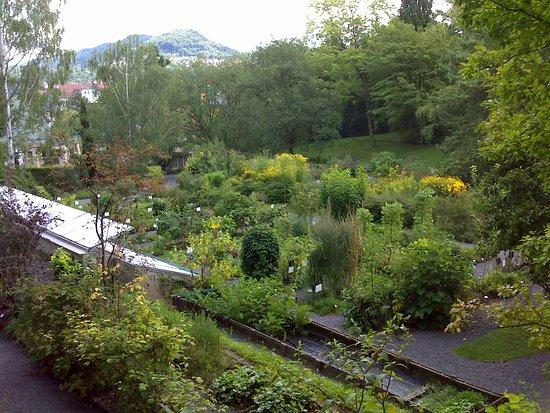 Al Fondo Invernadero Y Stmichael Picture Of Botanischer Garten