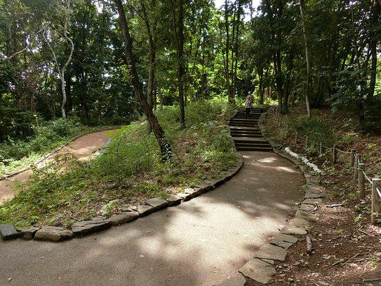 Tsukisamu Park