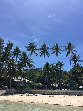 Haad Chao Phao Beach: photo3.jpg
