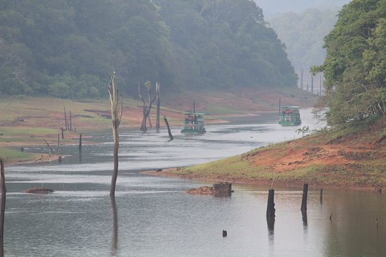 This is Periyar Lake in Thekkady. You may get your boarding passes from your local hotel in Thek