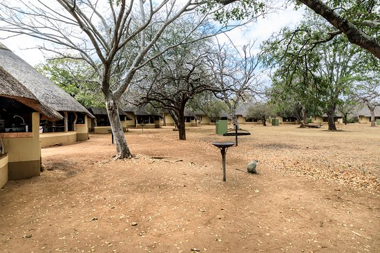 Satara Rest Camp: Bungalows located around circular ground