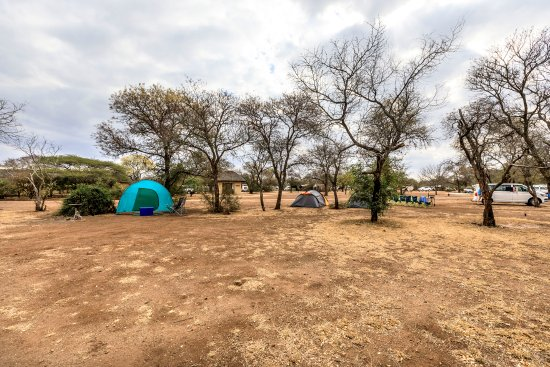 Satara Rest Camp: Camping Site