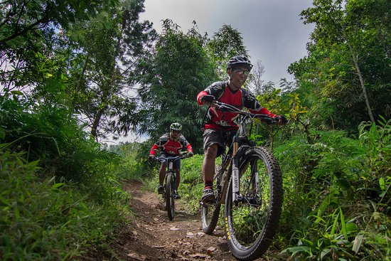 ‪Infinity Mountain Biking Bali - Day Tours‬