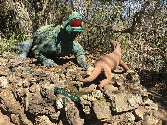 Nelspruit, South Africa: Sudwala Dinosaur Park