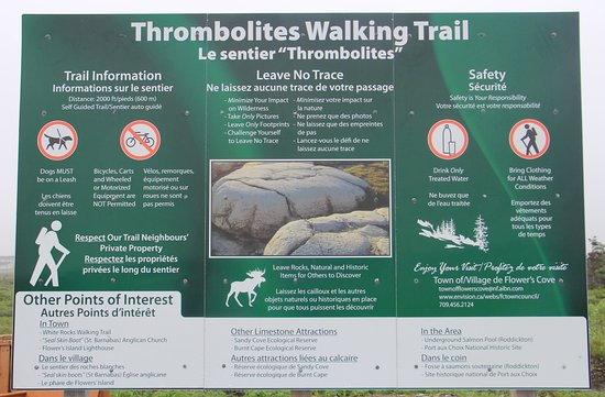 Flower's Cove, Canada : Thrombolite sign