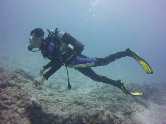 LJ Diving Tenerife: Mi primera inmersión