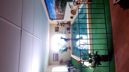 บ้านใต้ดิน เฟย์ อันเดอร์กราวน์ โฮม ภาพถ่าย