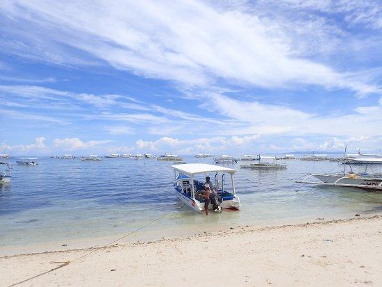 Philippine Fun Divers, Inc.: OI001553_large.jpg