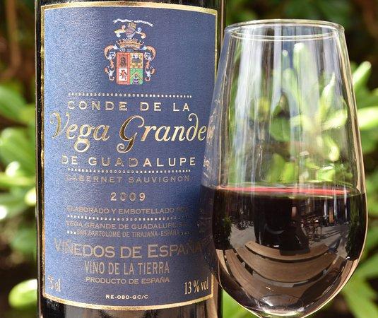 San Bartolomé de Tirajana, España: Vino Bodega Vega Grande, FINCA CONDAL