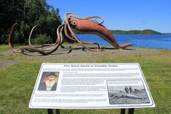 Newfoundland, Kanada: Squid and information board