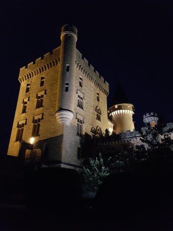 Chateau de Puymartin Photo