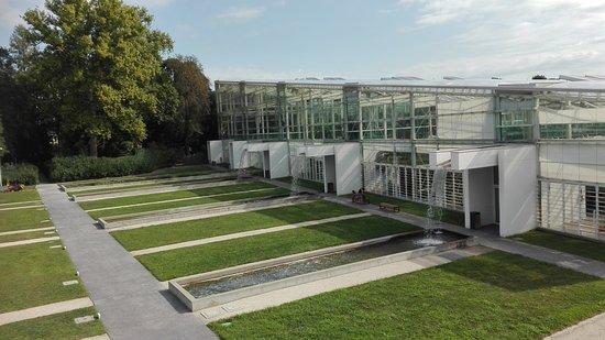 Orto botanico di padova foto di orto botanico di padova - Centro veneto del mobile recensioni ...