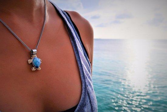 Memories Of Bonaire