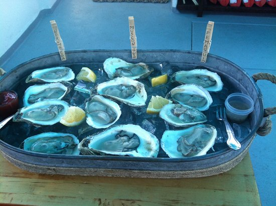 Damariscotta, ME: Oysters on the RiverTripper
