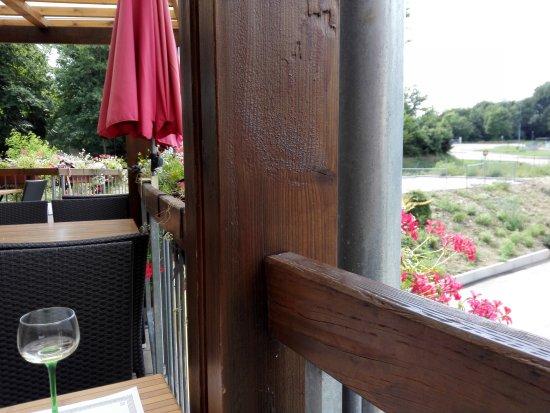 Altkirch, Francia: vue du parc