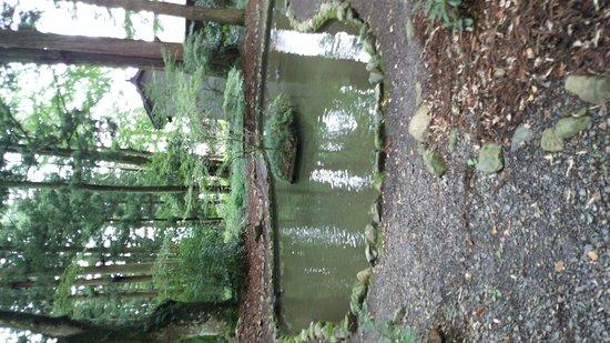 Tanagura-machi, Japan: DSC_2373_large.jpg