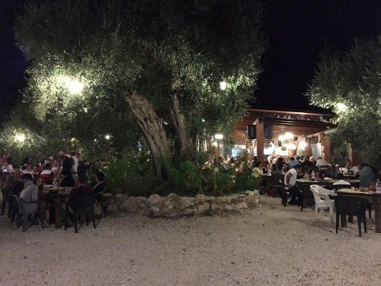 Osteria Pane & Vino: Cena sotto gli ulivi