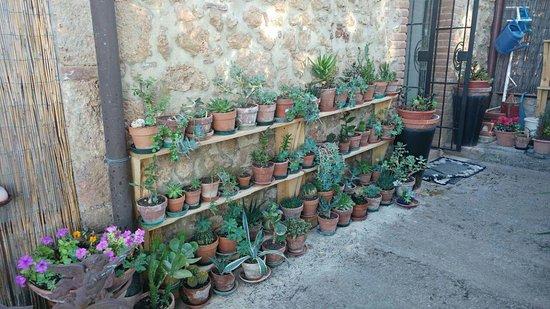 il giardino Aufnahme