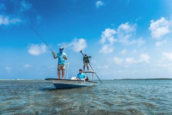 Turneffe Island, Belice: Fly fishing